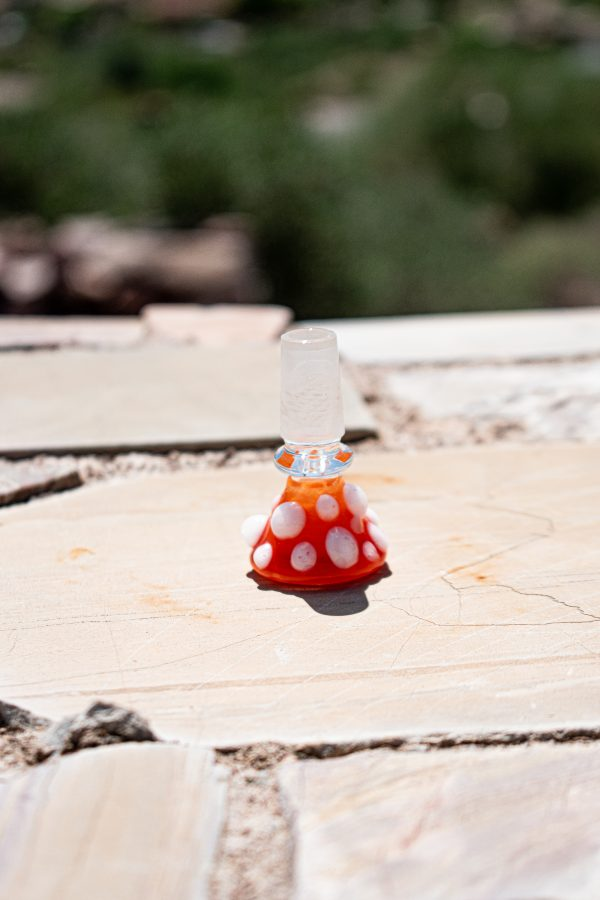 Orange Snowcap